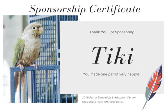 YOU TOO CAN SPONSOR ONE OF OUR PARROTS!