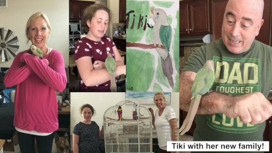 TIKI AND HER NEW FAMILY - SO HAPPY TOGETHER