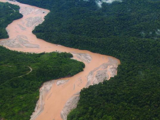 Mine tailings in the Ok Tedi River