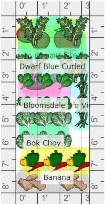 Jovial Immunity Bed built on GrowVeg planner