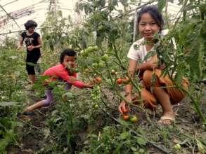 Children observing Jalpa vegetable farm.