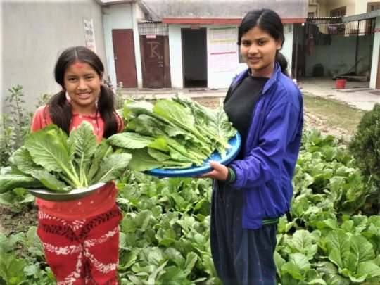 Children happy with vegetables they produced.