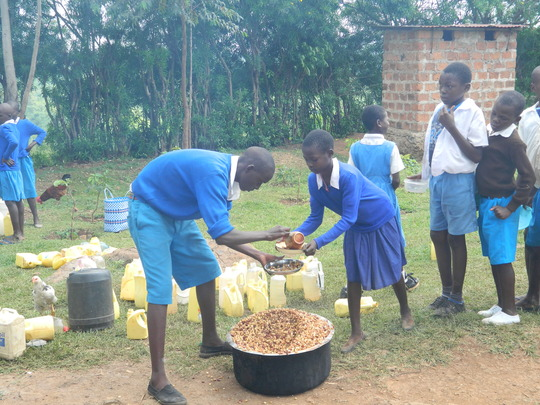 students receiving their lunch
