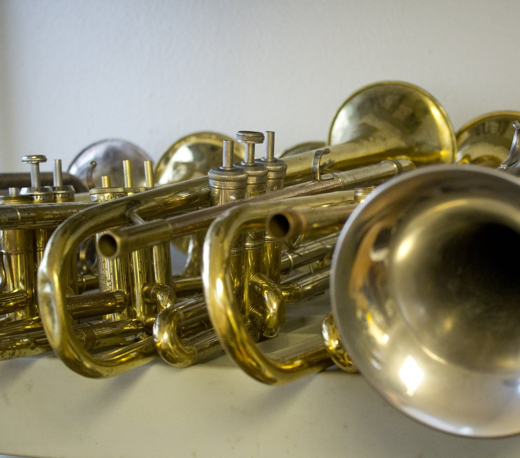 Old horns wait in line