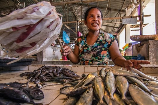 Casimira sells fish at a local market