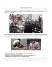 MONITOREO_DEL_VIVERO_REPORT.pdf (PDF)