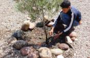 Tree nursery to benefit 10,000 Rural Moroccans