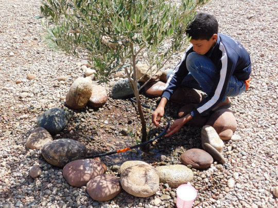 Tree nursery to benefit 10,000 Rural Moroccans