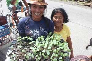 Leyte vegetables