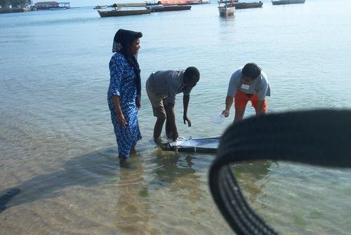 Sustainable Coastal Communities and Ecosystems