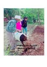 Field photo: organic fertilizer-making workshop (PDF)