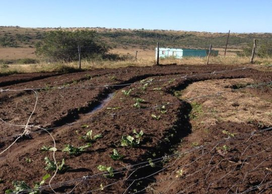 Farm of hope to the community