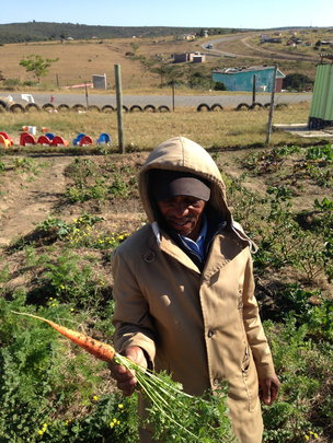 Sizwe and the bounty from his vegetable garden