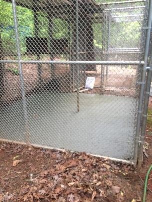 Concrete enclosure floor