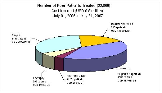 Patients Treated, breakdown of costs and services provided (grap