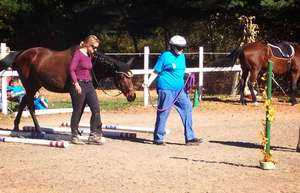 Thoroughbreds for Equine Facilitated Learning
