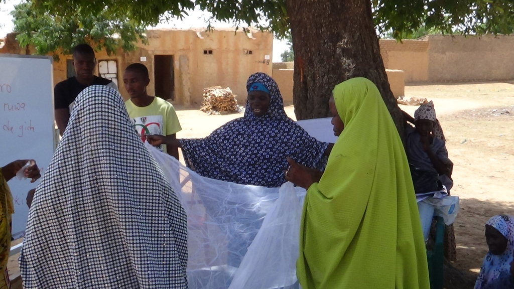 End Malaria in 50 Children of Madobi, Kano