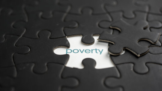 poverty, the puzzle