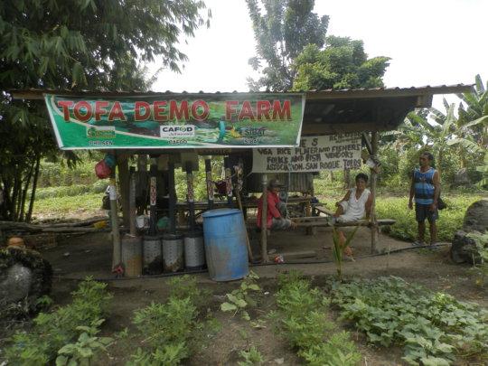 TOFA communal farm