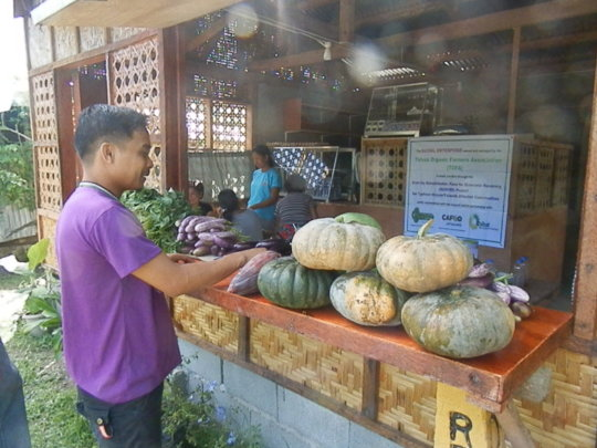 organic vegetables sold at TOFA store