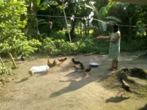 A woman farmer tending to her poultry