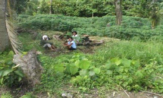 women farmers tending to their demonstratin farm