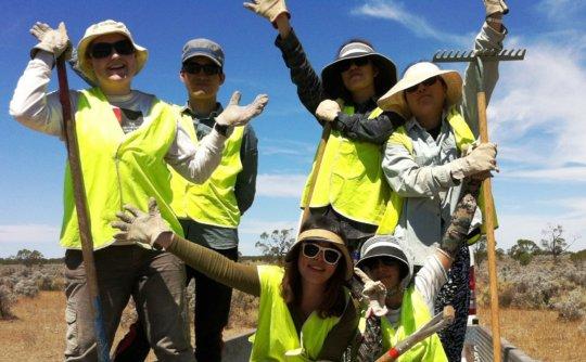 Trail Blazers. Volunteers maintaining trails.