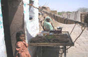 Food Security From Sustainable Agriculture, India