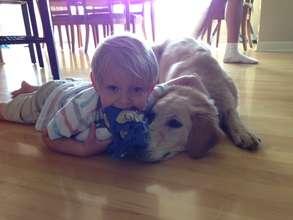 Seizure-Response Dog for Jacob
