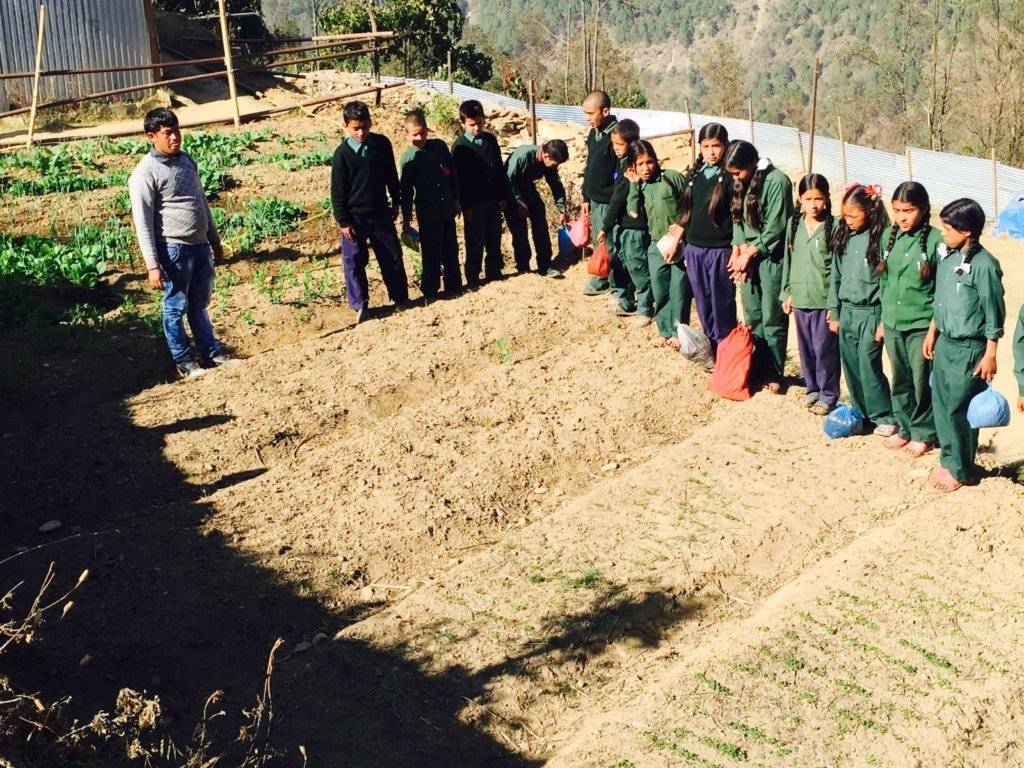 Agriculture in Schools, Milijuli Lower Sec. School