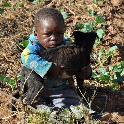 Provide Fortified Porridge to 115 Children