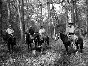 Surveillance trip on horseback