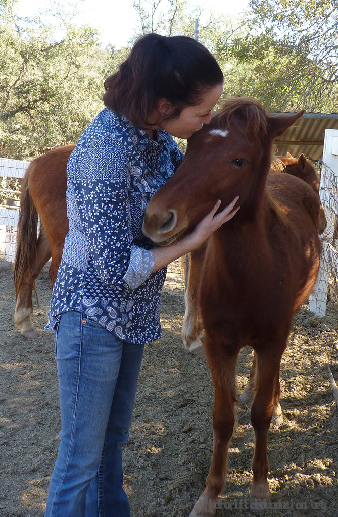 KaWachi, filly, (our little love bug)