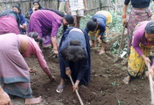 Women's Agricultural Training