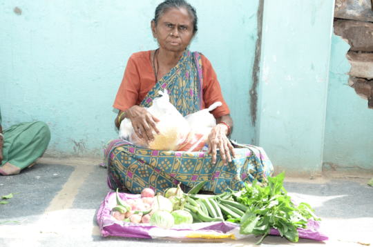 Poor senior citizen getting food provisions india
