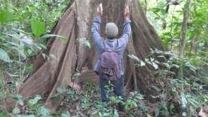 Piher Maceda, tree whisperer.