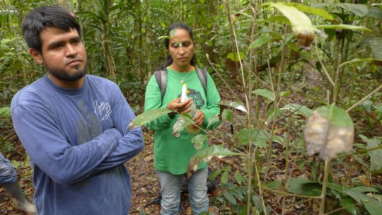 Manuel Huinga and Olivia Revilla take a specimen