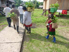 Carrying seedlings to the reforestation site