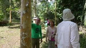 Camino Verde research team advisors