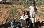 Seeds Will Change the Lives of Youth