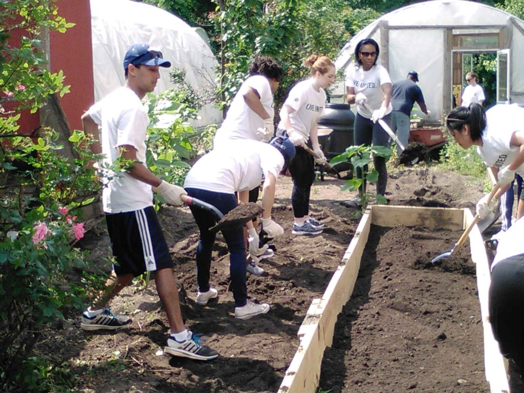 Reports On Grow A Youth Led Community Food Center In