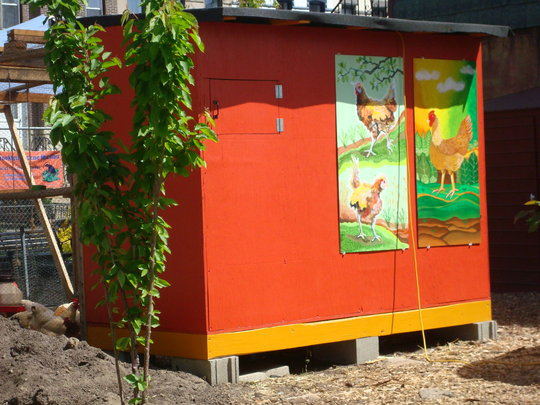 Freshly Painted Chicken Coop with Art