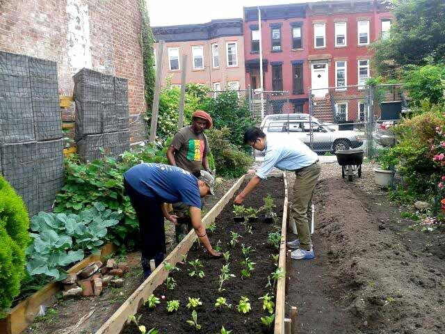 Spring planting of Summer vegetables