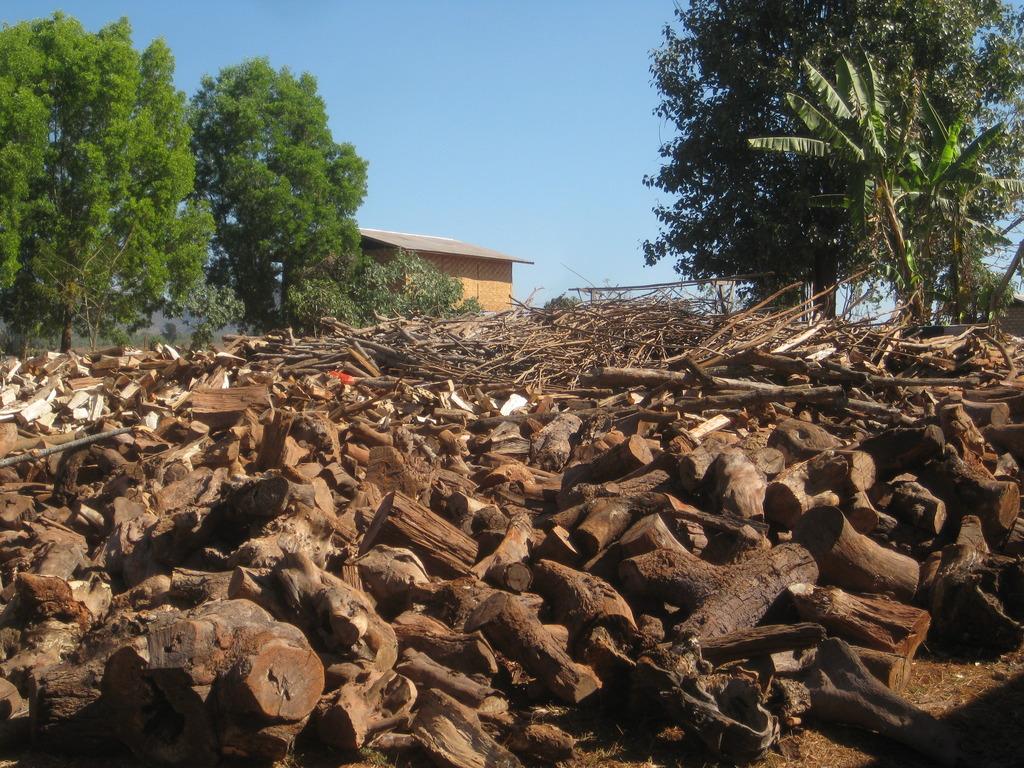 The woodpile at Naung Taung monastery