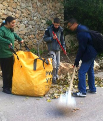 Volunteers assist Staff with Cleanup