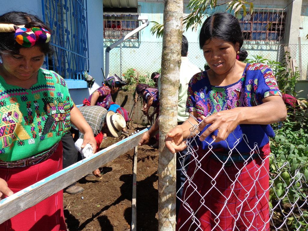 Seeds for Guatemala Maya to Grow 5 Tons of Food