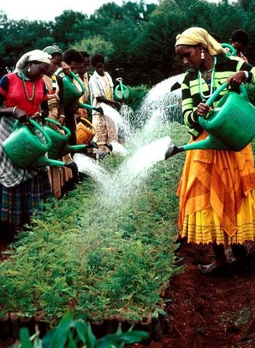 Millennium Water Program in Ethiopia