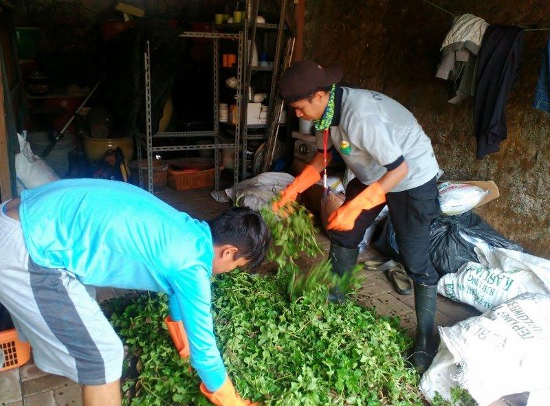 Preparing the First Compost Bin