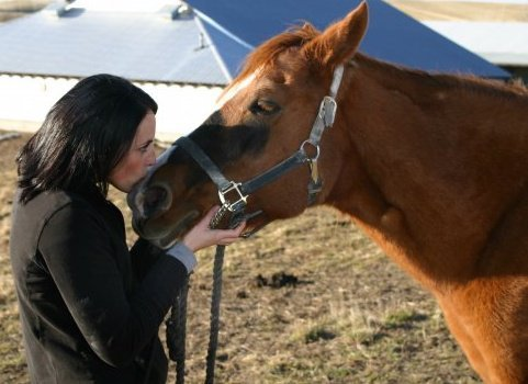 Hoofin'it for Horse and Human Healing