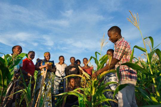 LEAD farmer members in Tanzania.